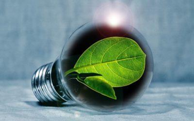 GreenHosting : pourquoi utiliser un hébergement vert ?