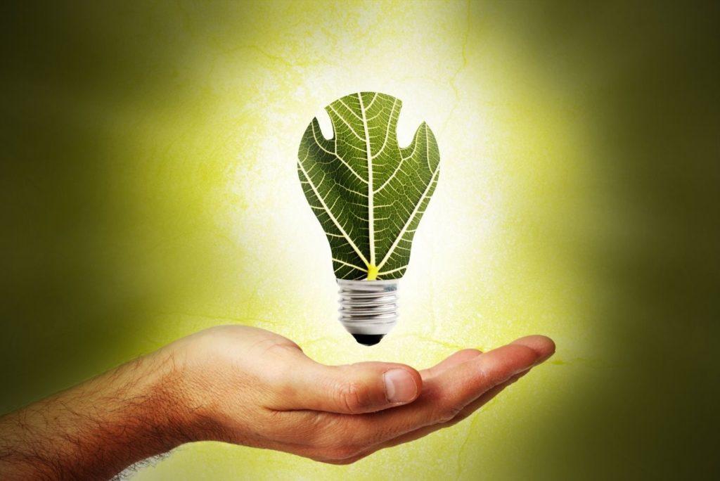 INNOVAflow Greenhosting DIGITAL FOREST